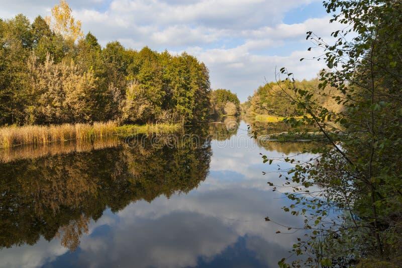 Golden autumn . River scenic landscape stock image