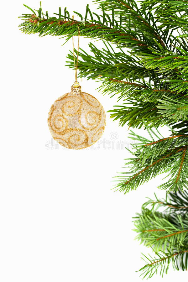 Golden ball on christmas tree stock image