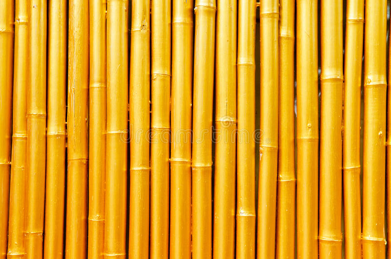 Download Golden Bamboo stock photo. Image of unique, wall, textures - 24420578
