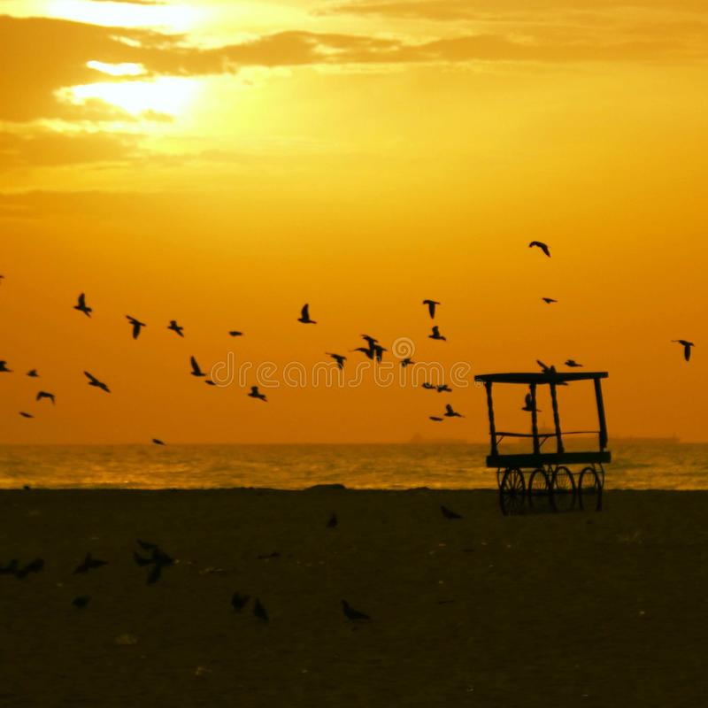 Sunrise or Sunset in Chennai. Sunrise or Sunset Unpredictable click at Chennai beach. a golden orangish sky with birds flocking together and a cart giving a stock photography