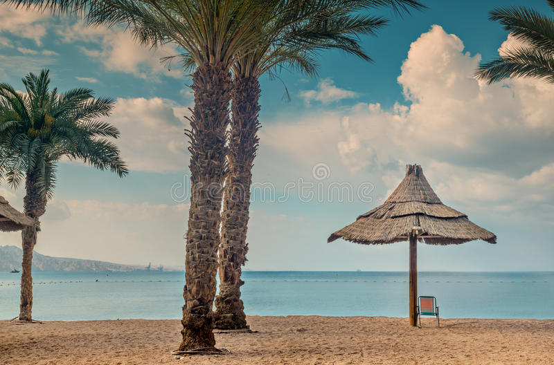 Golden beach in Eilat stock photography