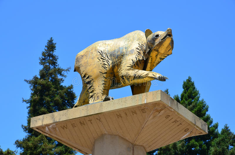 Golden Bear Statue Uc Berkeley Editorial Photography Image Of