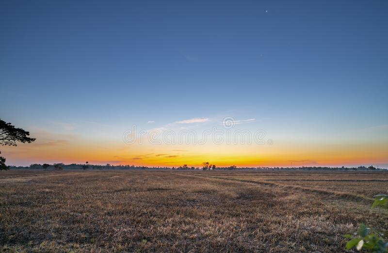 Golden beautiful Sunrise and clear at dry grass fields in the countryside at morning stock photos