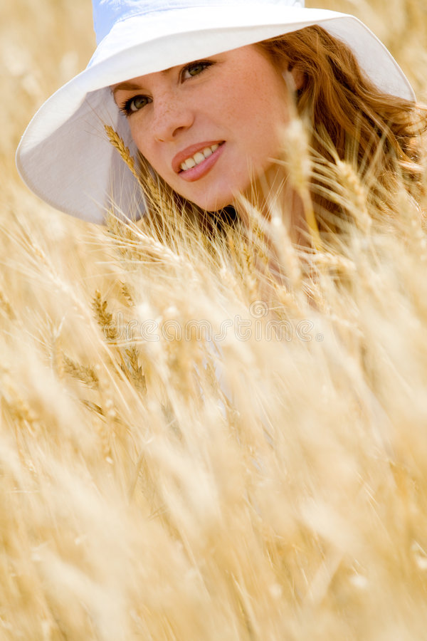 Download Golden beauty stock image. Image of model, human, lifestyle - 6049237
