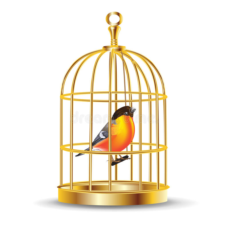 Golden bird cage with bird inside royalty free stock for Cage a oiseau decorative