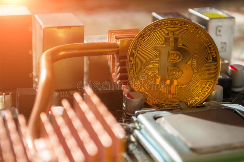 Golden bitcoin on the motherboard. Business concept of digital cryptocurrency royalty free stock photos