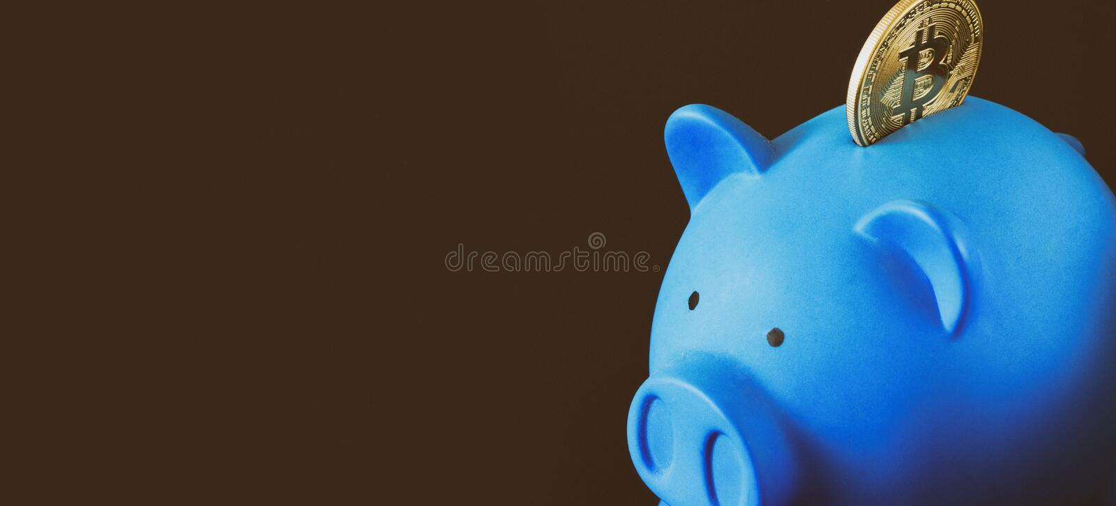 Golden Bitcoin and Piggy bank royalty free stock photo