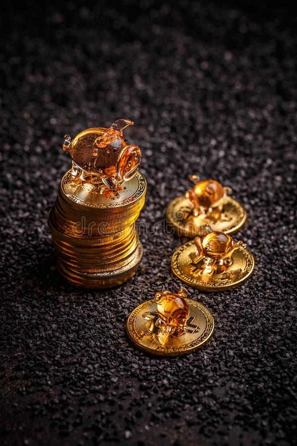 Golden bitcoin stock photos