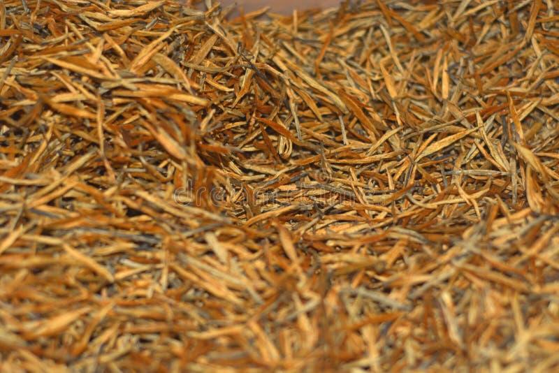 Golden Black tea royalty free stock photo