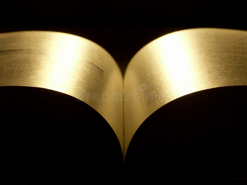 Golden book. Book opened at the middle royalty free stock photo