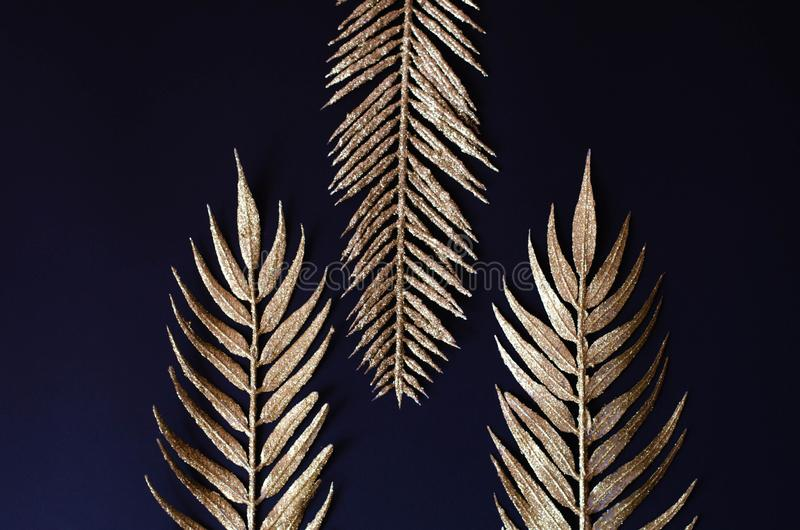 Golden branches of tropical plants on a black background. Minimalism. There is a place for text stock photography