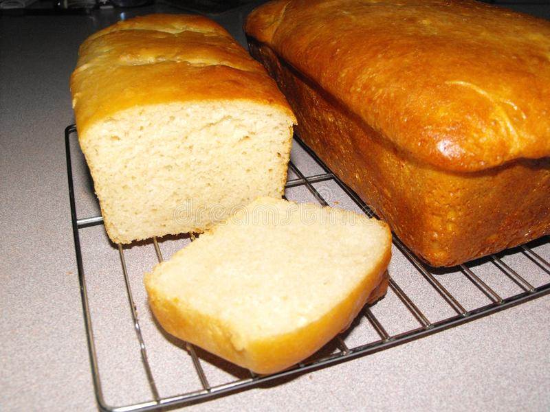 Golden Brown Loaves of Sourdough Bread royalty free stock photo