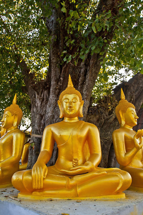 Download Golden Buddha stock image. Image of metal, ancient, icon - 23514305