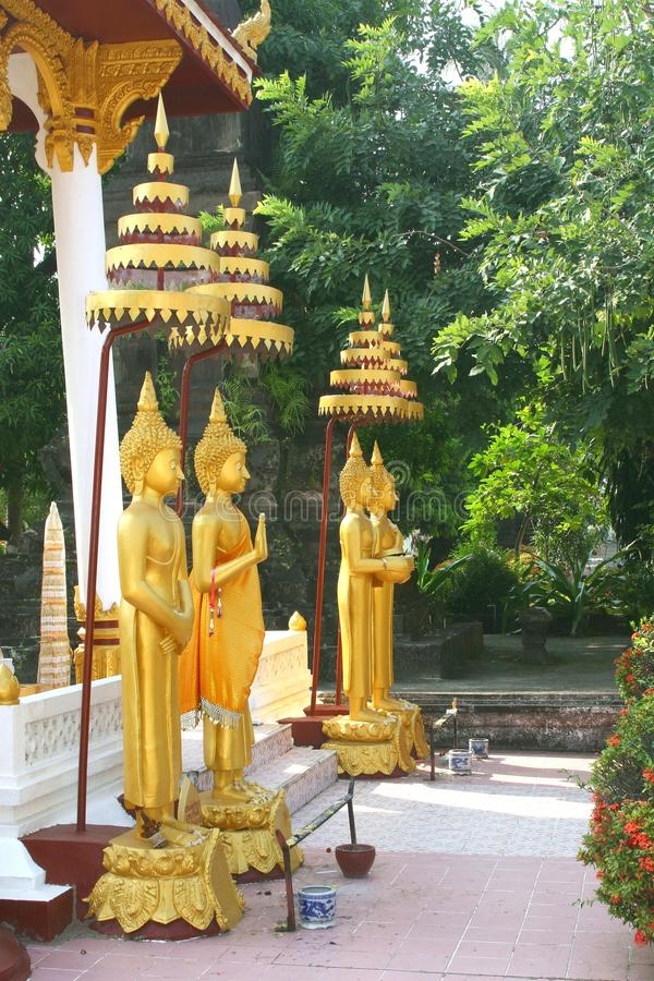 Free Golden Buddha Statues In Temple Wat Sisaket,Vientiane, Laos Stock Photography - 39032532