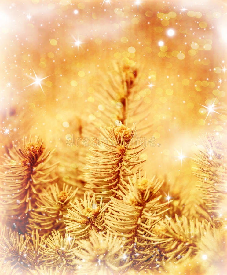 Download Golden Christmas tree stock image. Image of border, branch - 28194509