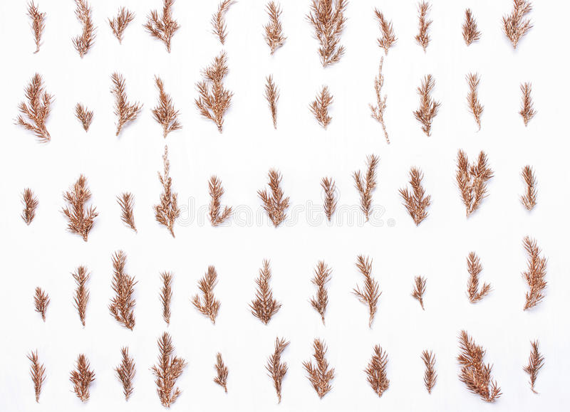 Golden Christmas tree branches. Golden tree branches in a row, christmas festive composition pattern on a white background stock photos