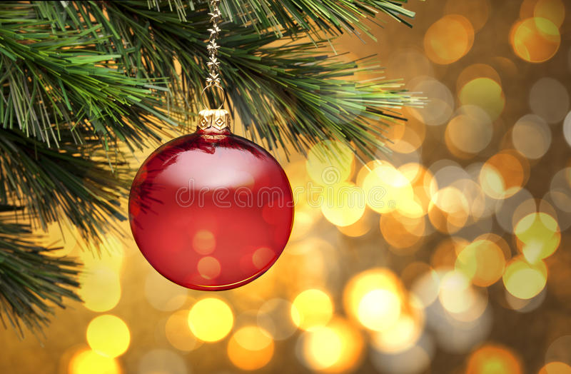 Golden Christmas Tree Scene Lights Background stock image