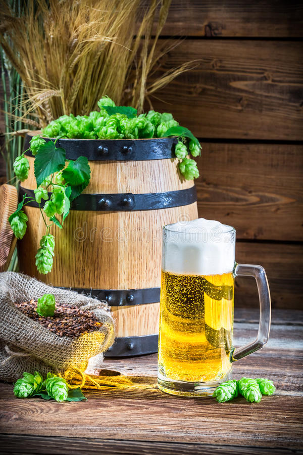 Golden color of light beers. On old wooden table stock images