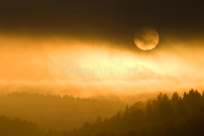 Download Golden Colors Of Misty Sunset Stock Image - Image: 14800831