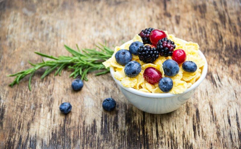 Golden corn flakes and fresh berries. Cranberries, blueberries and blackberries. Useful breakfast royalty free stock photos