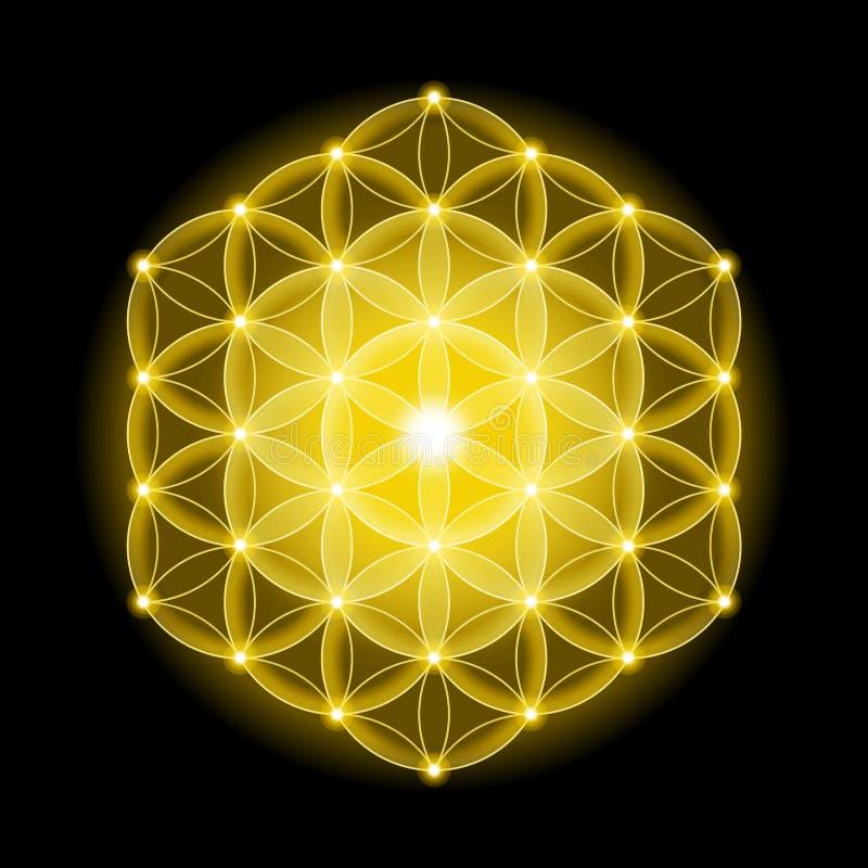 Golden Cosmic Flower of Life With Stars on Black Background stock illustration