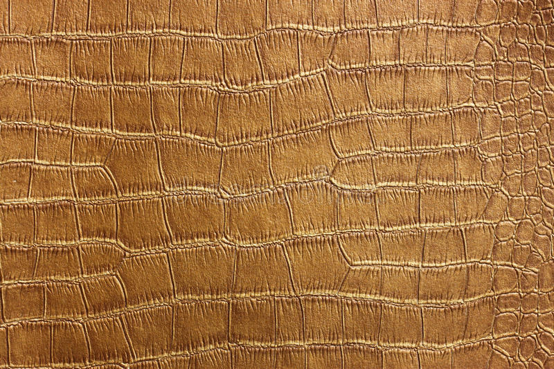 Golden Crocodile Skin Texture and pattern, closeup. Pic stock images