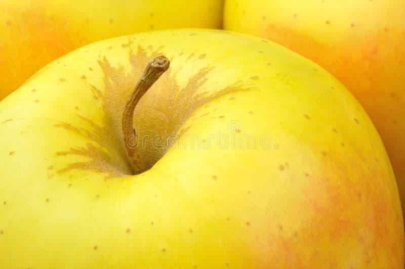 Download Golden Delicious Apple Stock Photos - Image: 28435433