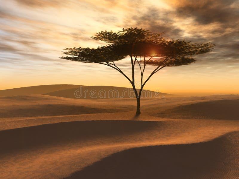 Golden Desert Dunes Single Tree. Sunset on golden desert dunes with single tree resembles African scene royalty free illustration