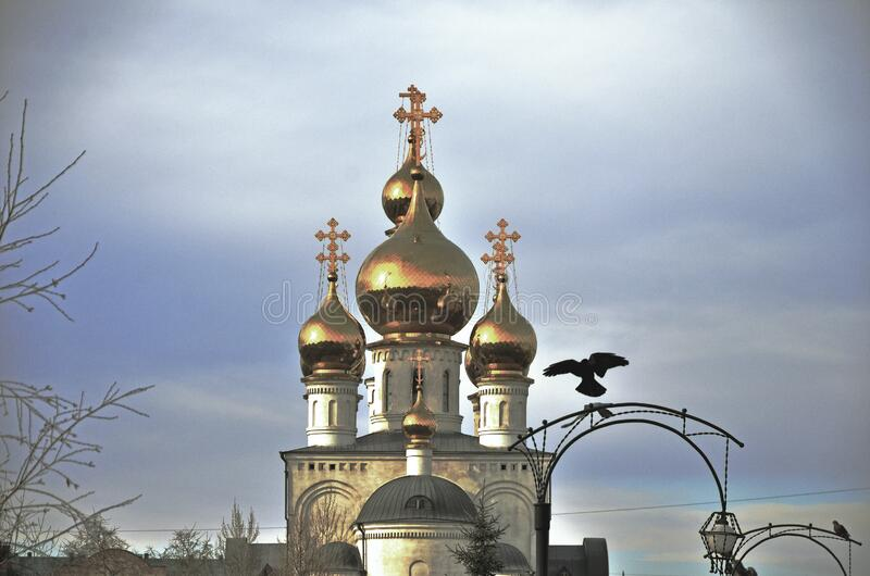 Golden domes of the Transfiguration Cathedral and flying birds, Russia, Abakan stock image