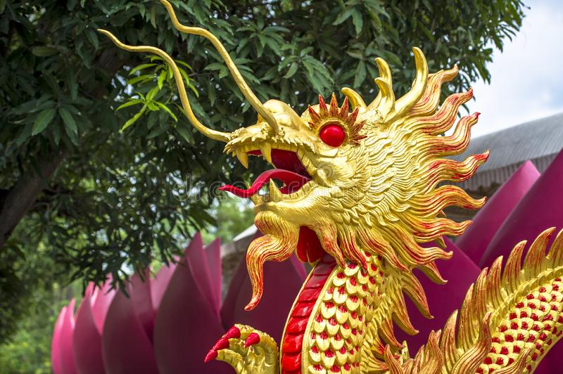 Golden dragon in oriental style stock photography