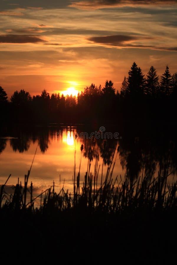 Free Golden Dusk Royalty Free Stock Images - 5338949