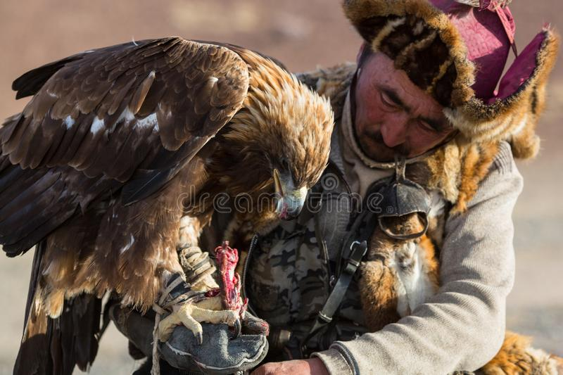 Golden Eagle Hunter, while hunting to the hare holding a golden eagles on his arms. royalty free stock photos