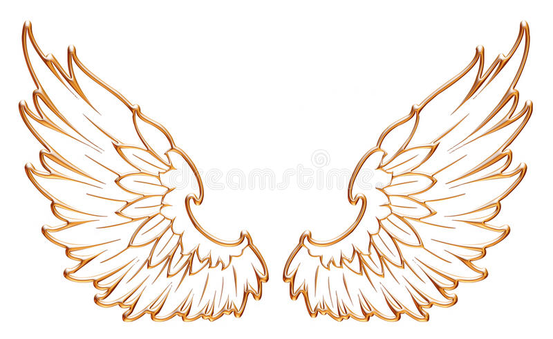Golden eagle wing isolated on white background. stock illustration