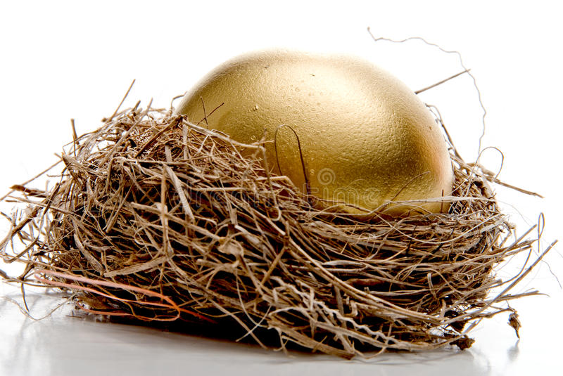 Download Golden Egg stock photo. Image of luck, closeup, food - 10459116