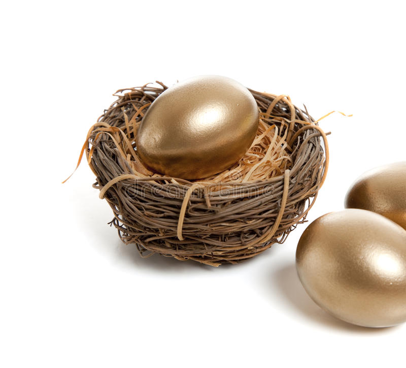 Download A Golden Egg in Nest stock image. Image of sayings, nobody - 10588151