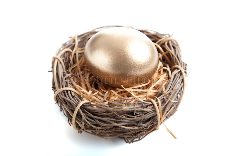 A Golden egg in nest on white background stock photo
