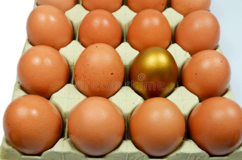 Golden Egg in with normal eggs. Golden egg in a box with normal eggs with white background royalty free stock photography