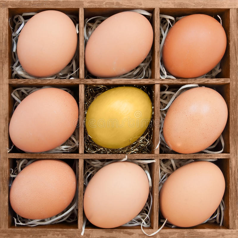 Golden egg among normal eggs in wooden box. Symbol of standing out or elite royalty free stock photography