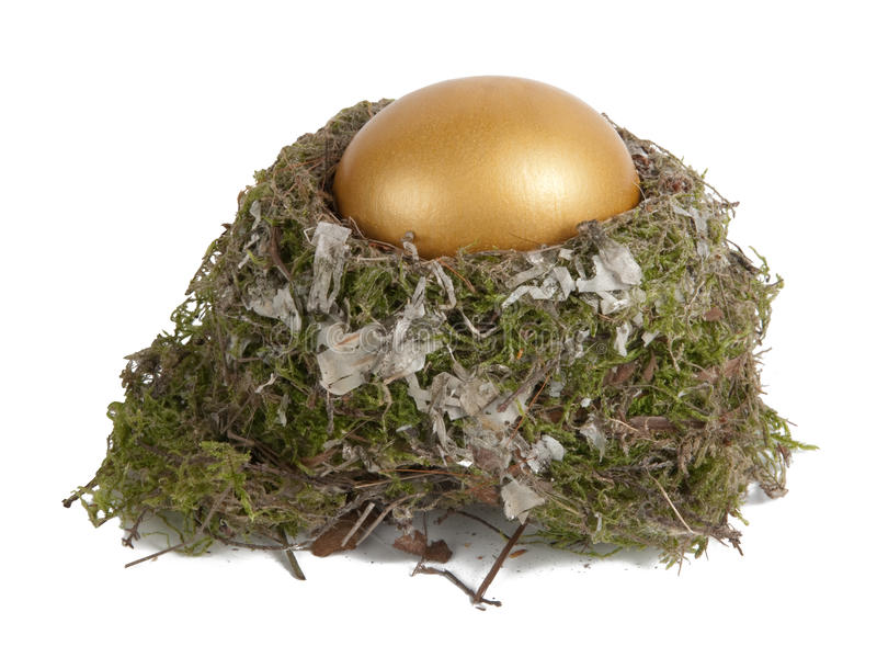 Download Golden egg in a real nest stock photo. Image of gold - 17361348