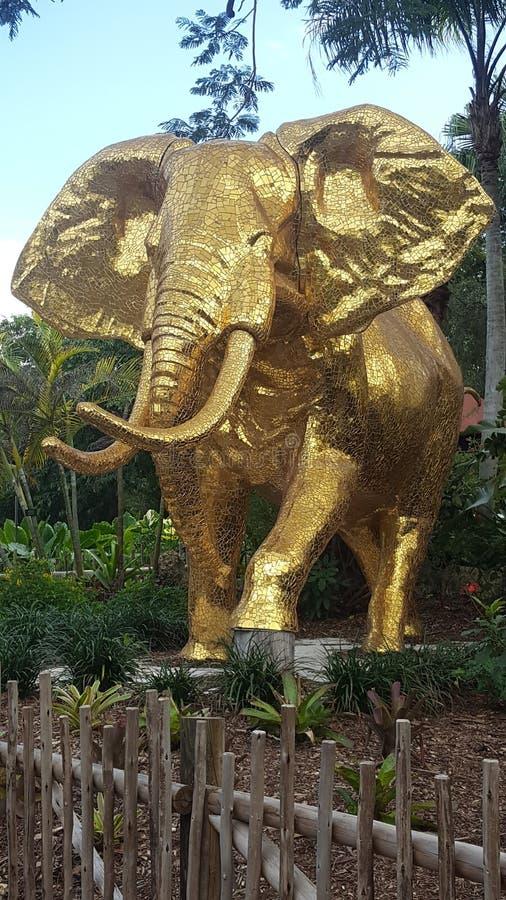 A golden elephant stock image