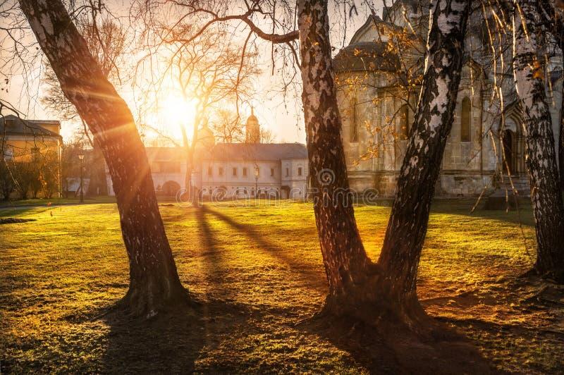 Golden evening i royalty free stock photos