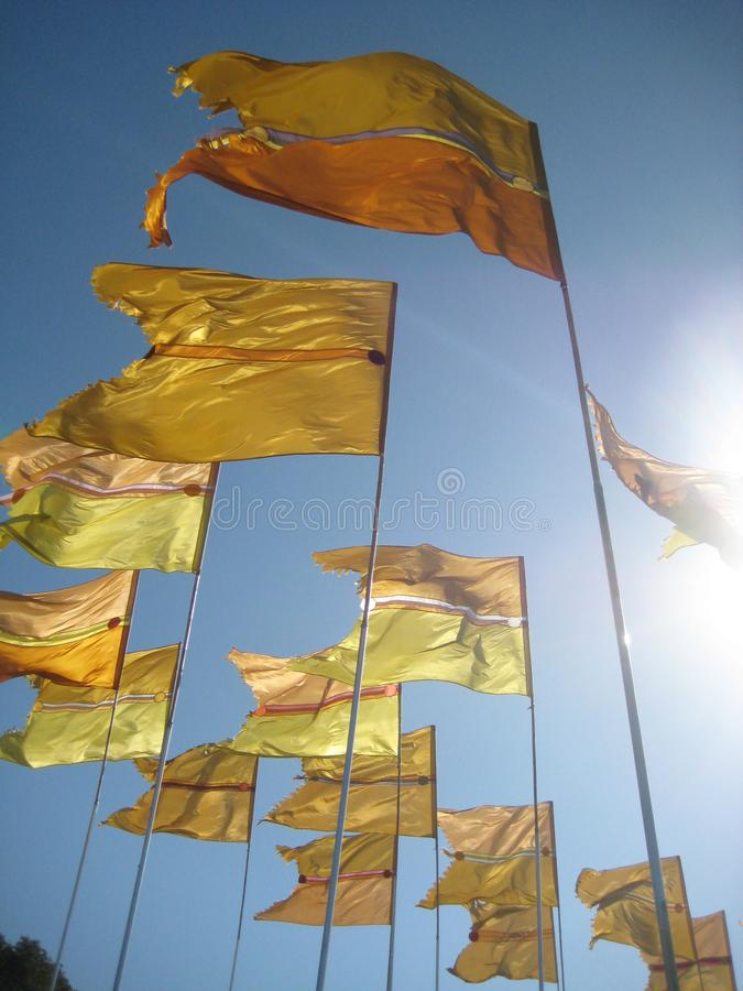 Golden flags in the sunlight stock photography