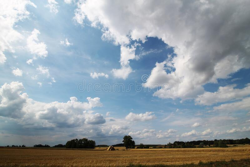 Golden fields and skyscape, sky before storm royalty free stock photography