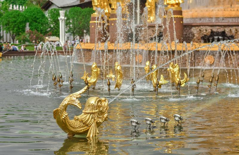 Golden fish in the fountain of friendship of peoples. In the park VDNKha stock photography