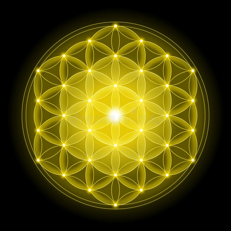 Free Golden Flower Of Life On Black Background Stock Photography - 62530552