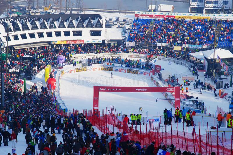 Golden Fox 2013 in Maribor. Wold Ski Competition Golden Fox 2013 on Pohorje in Maribor, Slovenia: finish during 1st run of slalom on 27.1.2013 stock photography