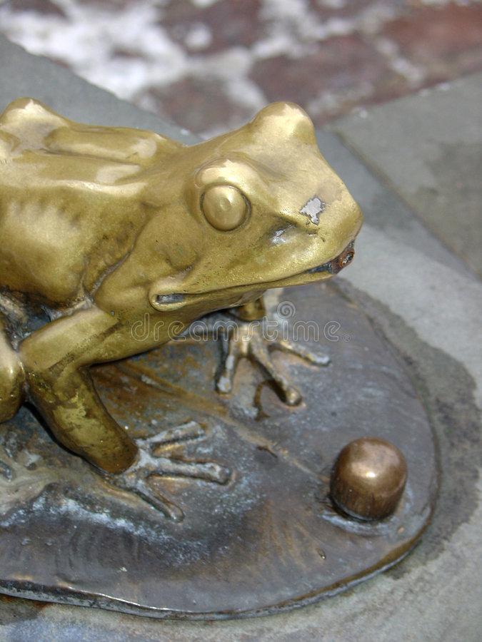 Free Golden Frog Stock Images - 305844