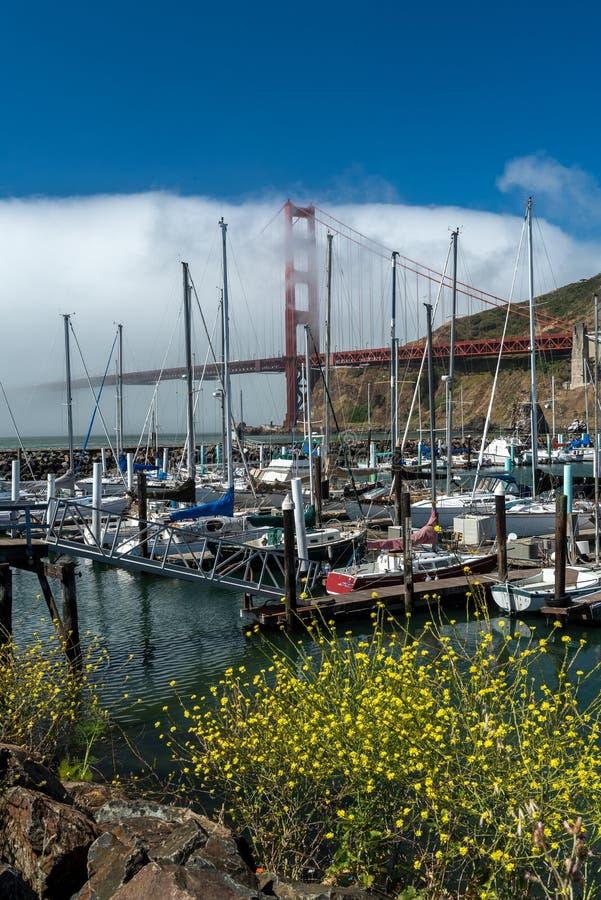 Golden gate bridge en de Presidio-Jachthaven stock afbeeldingen