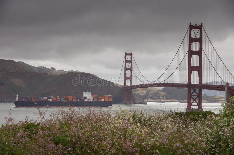 Golden gate bridge och ett lastfartyg royaltyfria bilder