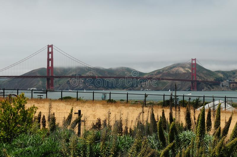 Golden Gate Bridge San Francisco View From Presidio. On A Cloudy Day royalty free stock photography